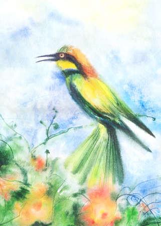 watercolor technique: Water color illustration of a tropical bird. Wet-in-Wet watercolor technique