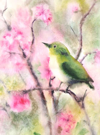 watercolor technique: Water color illustration of a small green bird sitting on a branch. Wet-in-Wet watercolor technique