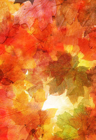 Abstract watercolor pattern with autumn leaves in the background in red color