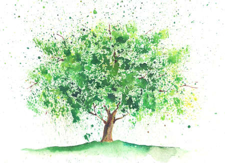 tree: Seasonal watercolor tree painted in a summer theme Stock Photo