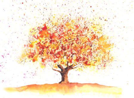 Seasonal watercolor tree painted in a autumn theme 版權商用圖片