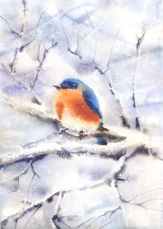 watercolor technique: Water color drawing of a bird sitting on a branch in winter. Wet-in-Wet watercolor technique Stock Photo
