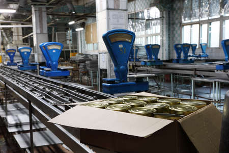 food plant: The workshop production of fish products with the old blue scales at the cannery