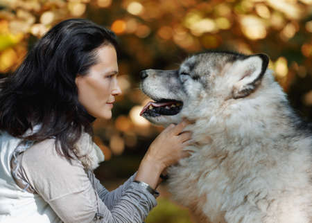 Portrait of a young white woman with an Alaskan Malamute dog in the forest against the background of nature Фото со стока