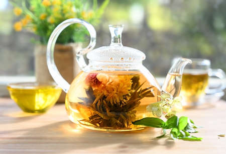 Glass tea teapot with a blooming tea flower stands on the table in the rays of the sun Zdjęcie Seryjne