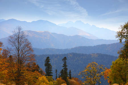 Panoramic views of the mountains and yellow-orange trees in autumn. Caucasus nature reserve in Russia
