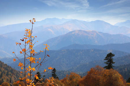 Panoramic views of the amazing mountains in Russian Caucasus