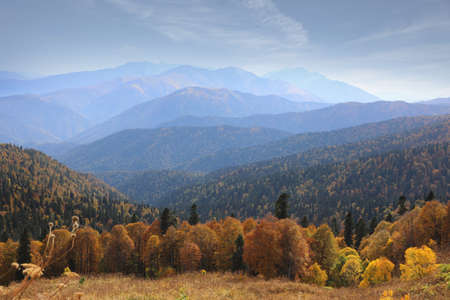 Wonderful Caucasus mountain landscape with a rocky ridge in the distance and an autumn meadow in the foreground. Adygea, Russia Zdjęcie Seryjne