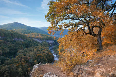 View of the mountains and yellow-orange trees in autumn. The Caucasus nature reserve in Russia