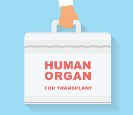 operation room: Human organ for transplant bag. Transplantation conceptual illustration.