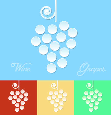 wine card: Wine grapes illustration. Wine card vector design.