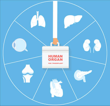 recipient: Human organ for transplant icon set. Transplantation of ograns concept.