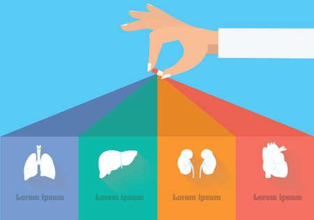副作用のインフォ グラフィック。治療概念の目標  イラスト・ベクター素材