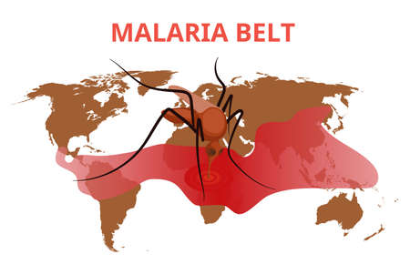 Malaria belt conceptual illustration. The mosquito is sucking blood from the blood stain on the world map. Ilustração