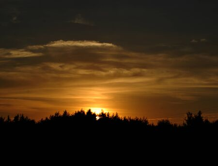 Evening sunset, silhouette of trees, blackout photo