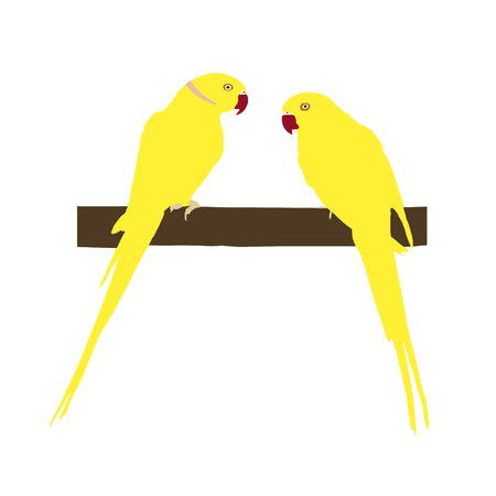 Two bright yellow parrots sit on a branch, vector illustration