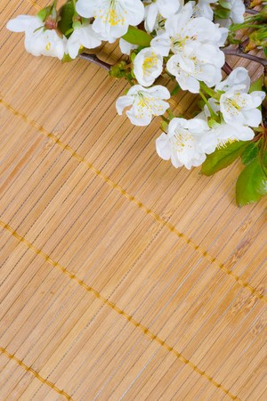A branch of the cherry blossoms on a bamboo napkin photo
