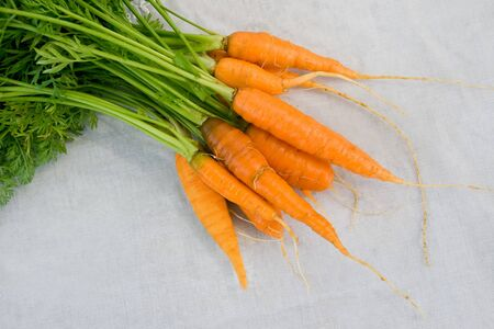 Fresh carrot at the white tablecloth