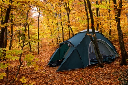 Camping equipment. Tent in the autumn forest Stock Photo
