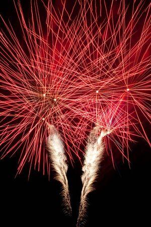 Beautiful fireworks in the night sky Stock Photo - 11570890