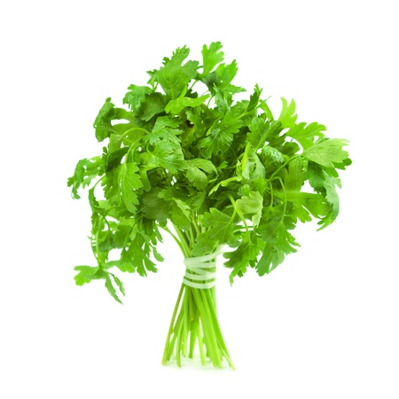 Parsley. Isolated on white background.  photo