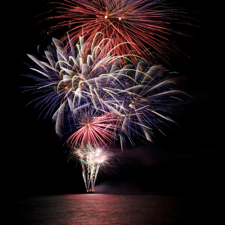 christmas in july: A beautiful firework over the water in the night sky