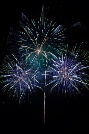A beautiful firework in the night sky