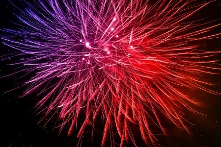 A beautiful firework in the night sky Stock Photo