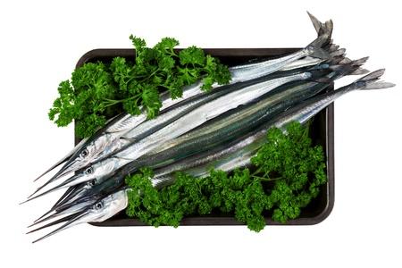 Fresh fish garfish (Belone belone) in leaves of parsley. Isolated on white background photo