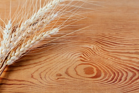 Ears of wheat on a wooden background photo