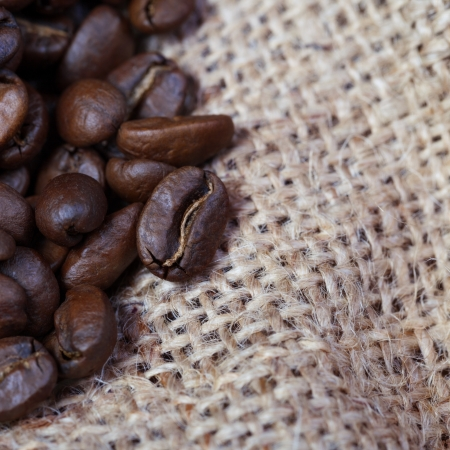 Background of coffee grains scattered on sacking photo