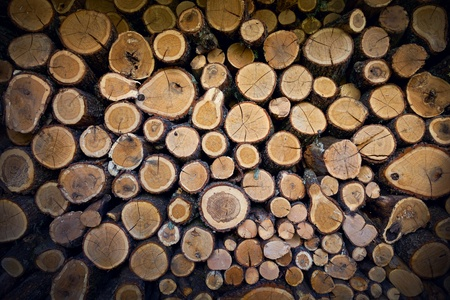 Background of firewood stacked in the woodpile  photo