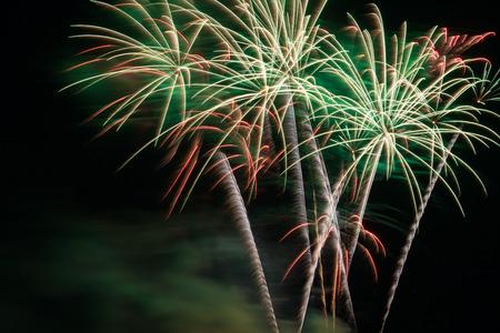 Outbreaks of fireworks in the night sky 版權商用圖片
