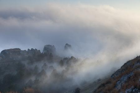 Rocks and trees in the fog 版權商用圖片
