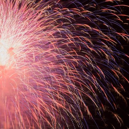 Fireworks in the night sky 版權商用圖片