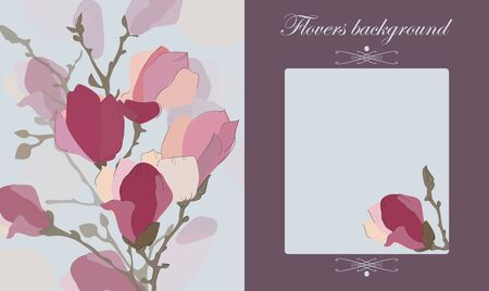 greeting card background: Vector floral background , gift card , greeting card