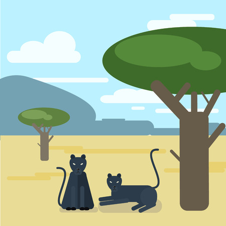 settled: Wild cats. Two Panthers settled down a tree. Vector illustration of a flat Illustration