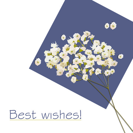 best wishes: Greeting card with flowers with the best wishes. Illustration