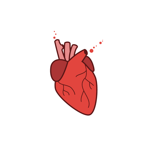hollow body: Human heart icon,  vector realistic illustration