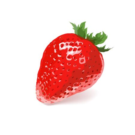 Ripe strawberry on a white background. Vector