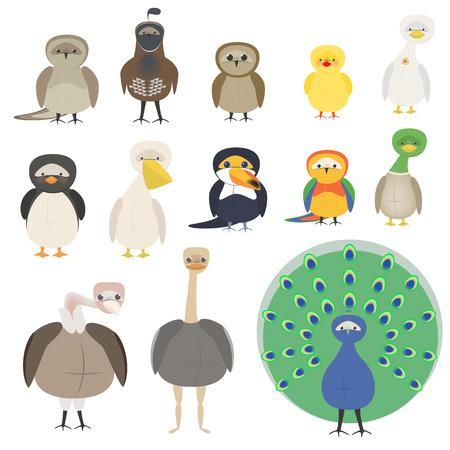 A set of different birds. A parrot, a penguin, a sparrow, an owl, a pelican, a toucan, a peacock.