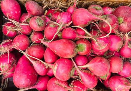 Fresh organic radiches elective close-up focus. Pink radiches .