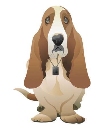 perros graciosos: Dulce de perro