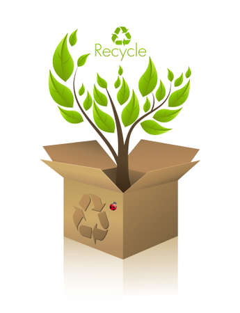 Ecology box Vector