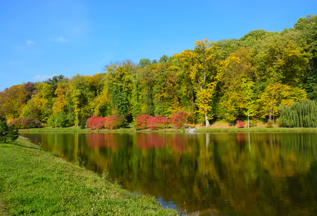 Lake in the autumn park photo