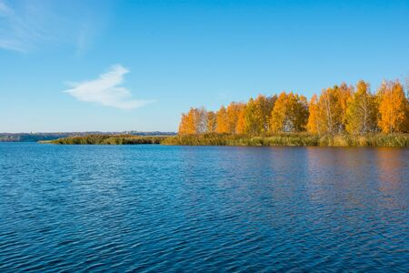 islet: Islet with autumn trees in the middle of the river. Autumn landscape Stock Photo