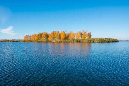 autumn trees: Islet with autumn trees in the middle of the river. Autumn landscape Stock Photo