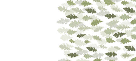 Floral web banner with drawn color exotic leaves. Nature concept design. Modern floral compositions with summer branches. Vector illustration on the theme of ecology, natura, environment