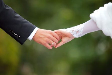 hands of the bride and groom  Stock Photo