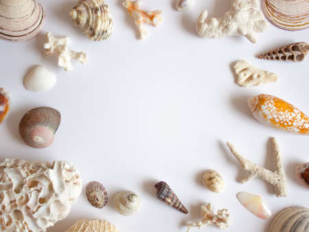 Sea shells, stones, mussels and corals frame on white background.